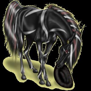 Верховая лошадь Чистокровная испанская Серый в яблоках