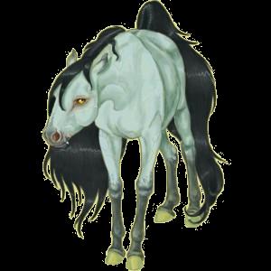 Верховая лошадь Арабская Чистокровная Мышино-серый