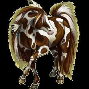 Верховая лошадь Донская Серый в яблоках