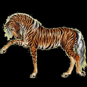 Верховая лошадь Арабская Чистокровная Изабелловая