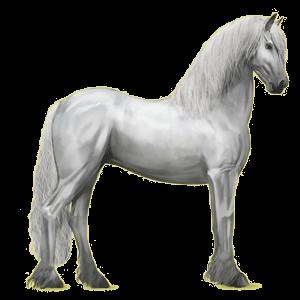 Верховая лошадь Фриз, Фризская Вороная