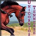 unicornios tennessе