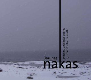 Žvilgsnis, apakintas Šiaurės