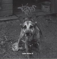 Canine visions IX