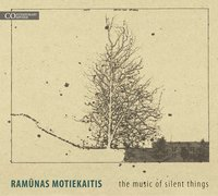 The Music of Silent Things