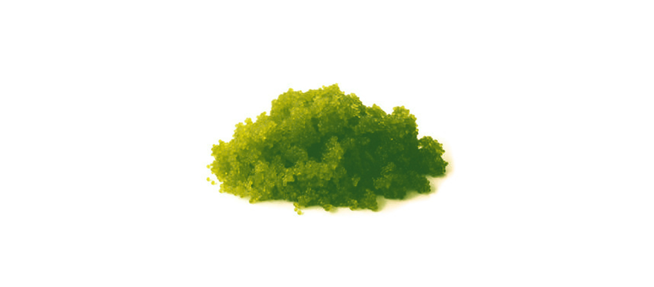 Oeuf de tobiko au wasabi