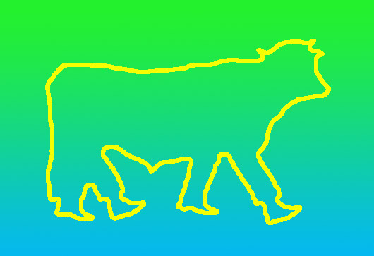human cow hybrid