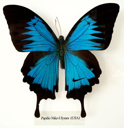 branded butterfly wings - by Koert van Mensvoort