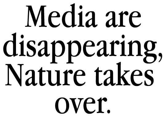 the media are disappearing, nature takes over