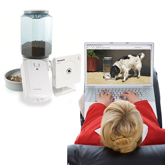 remote pet feeding
