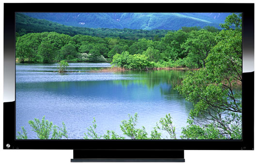 Flatscreen TV primary requirement for survival?