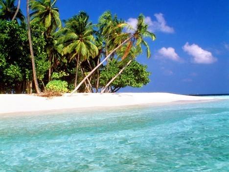 island-paradise-maldive.jpg