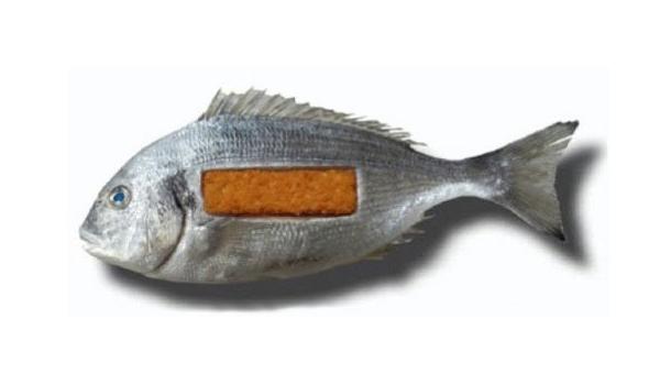 fish_stick-e1314517554362