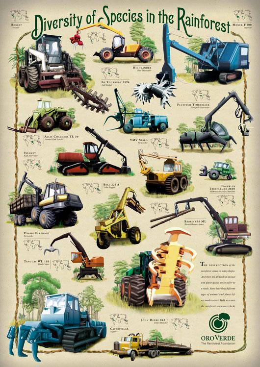 oroverde-rainforest-foundation.jpg
