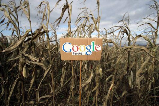 google5_530.jpg