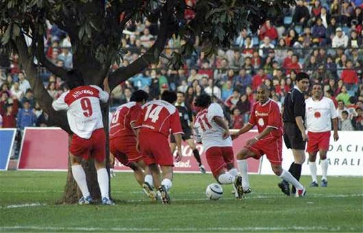 soccer tree 01