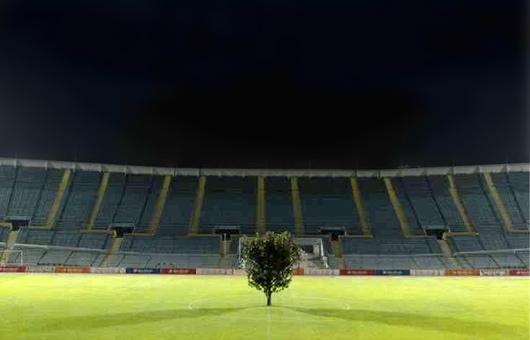 soccer tree 02