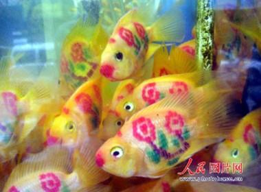 tattooed_goldfishes_530.jpg