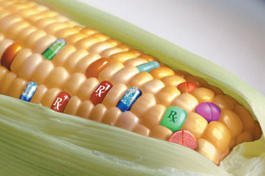 medicines corn