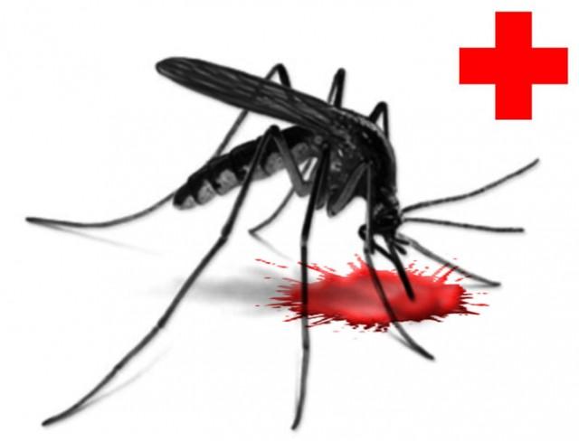mosquito_redcross