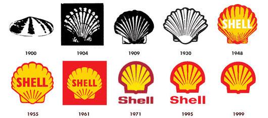 shell_evolution_530