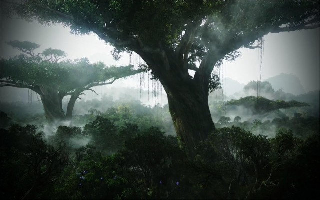 avatar forest
