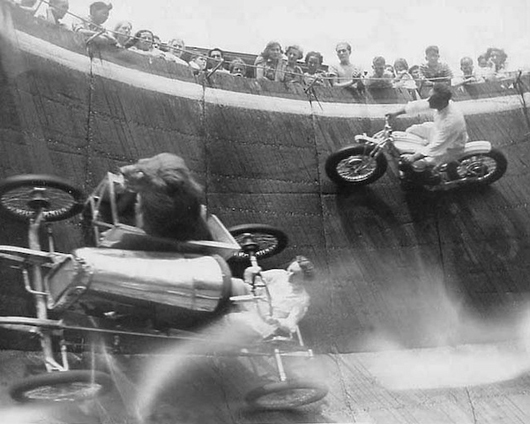 lion riding a motorcycle