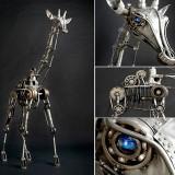 Giraffe by Andrew Chase