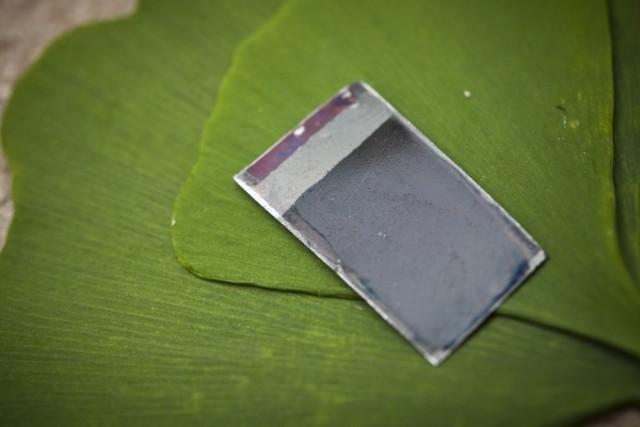 MIT artificial leaf