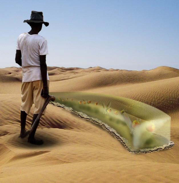 desertgel