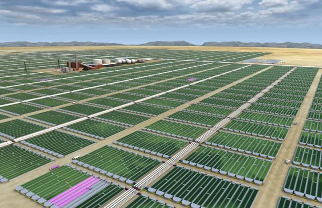 algae bioreactor farm