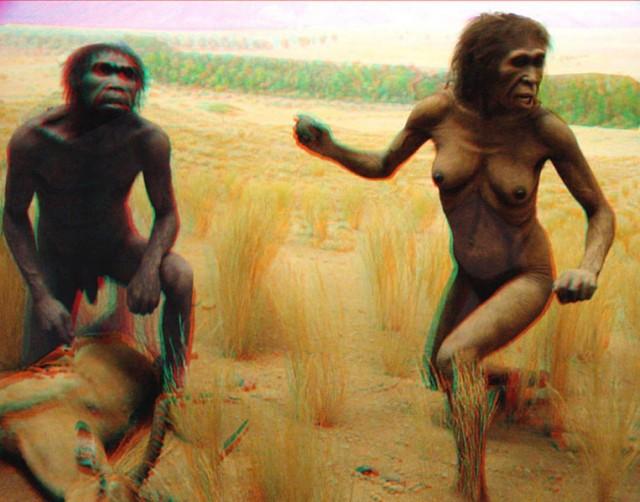 Australopithecus couple