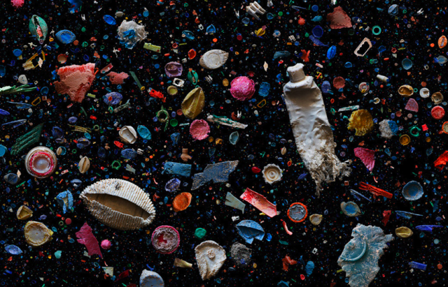 Mandy Barker Plastic Ocean