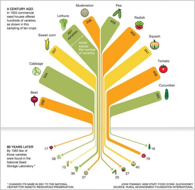 loss of crop biodiversity