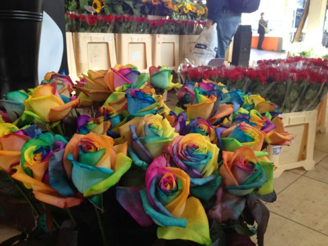 hypernatural_rainbow_roses