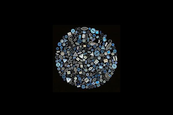 diatom-circle