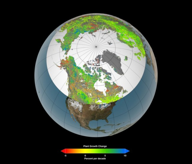 the-artic-greens-as-the-world-warms-533x640