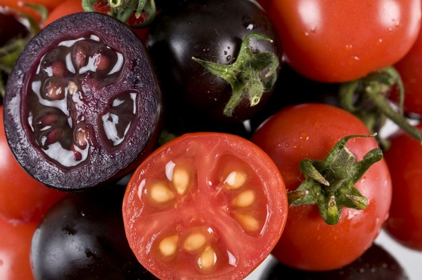 Scientists Engineer Cancer Fighting Purple Tomatoes