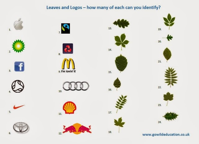 leavesandlogos identification quiz