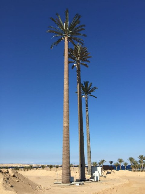 palmtree_antenna