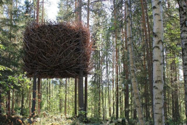 treehotel-birds-nest-exterior