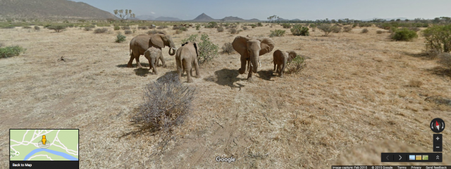 virtual safari through google street view