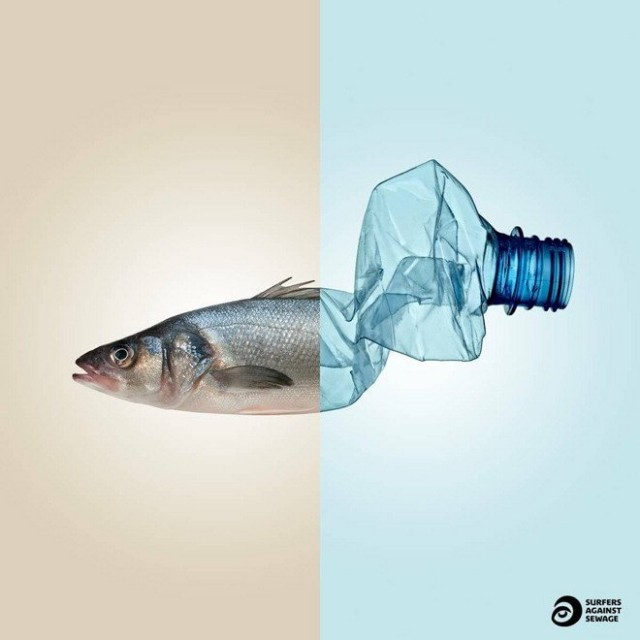 plastic presence in our oceans