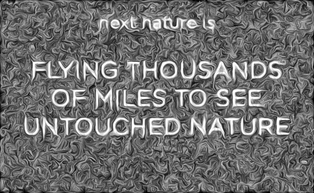 Flying thousands of miles to see untouched nature