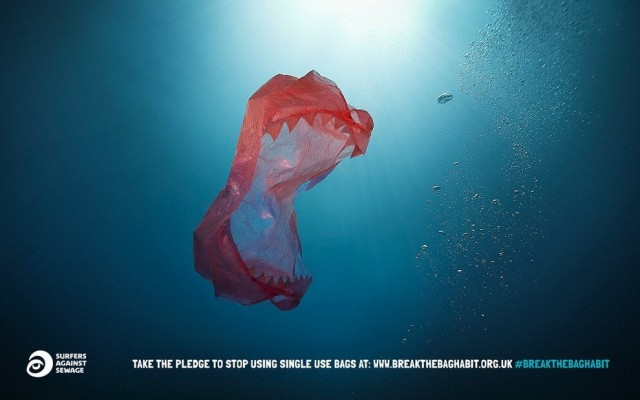 plastic to outnumber fish by 2050