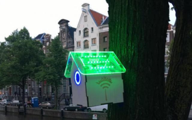 TREEWifi Amsterdam startup
