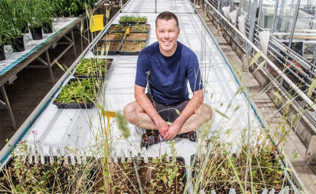 wageningen-ur-crops