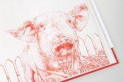 InVitroCookbook_photo__piginthegarden_web