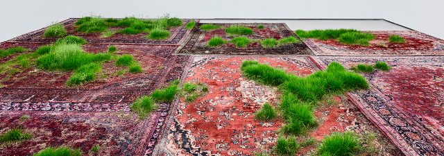 Martin Roth brings Persian rugs to life with the cultivation of grass