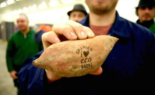 Eco-friendly lasers are to replace stick-on labels on fruits and veggies.